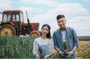 obsluzhivanie-traktorov-mtz-v-Moskve
